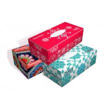 Bashundhara Facial Tissue Box