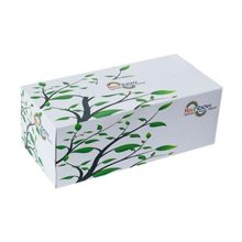 Bashundhara Facial Tissue Box