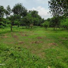 Land Sell  in Dhaka