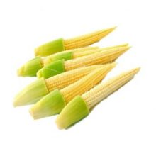Baby Corn 10 Pcs Packet (P)