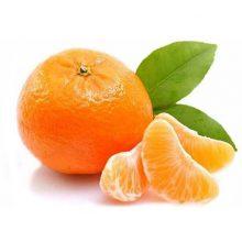 Orange Per Kg
