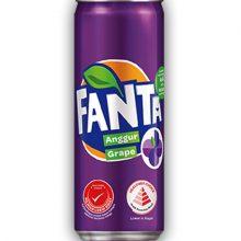 Fanta Can (Grape)-320ml