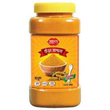 Turmeric Powder Pran 200 gm